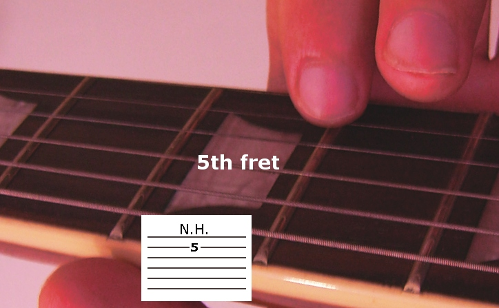 Playing Natural Harmonics - Fretting Hand